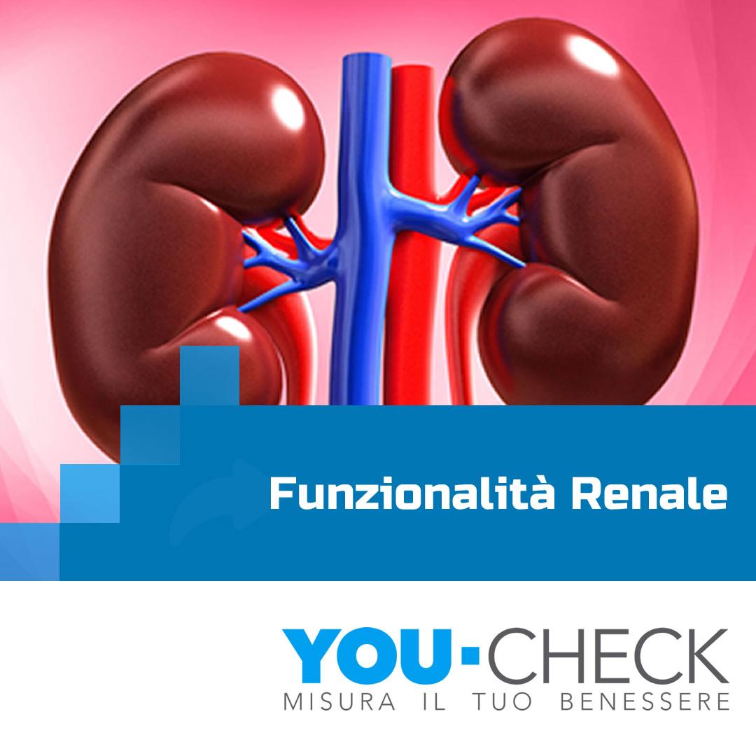 checkup-renale